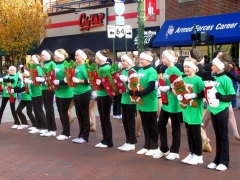 Bowling Green Holiday Parade